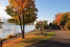 Fall-foliage-from-cottage-F